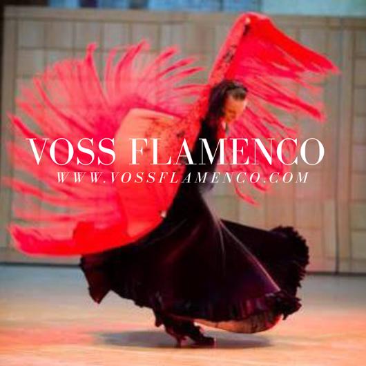 vesrtidos ensayo y espectáculo flamenco
