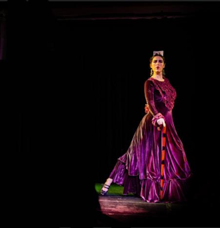 vestido ensayo flamenco terciopelo